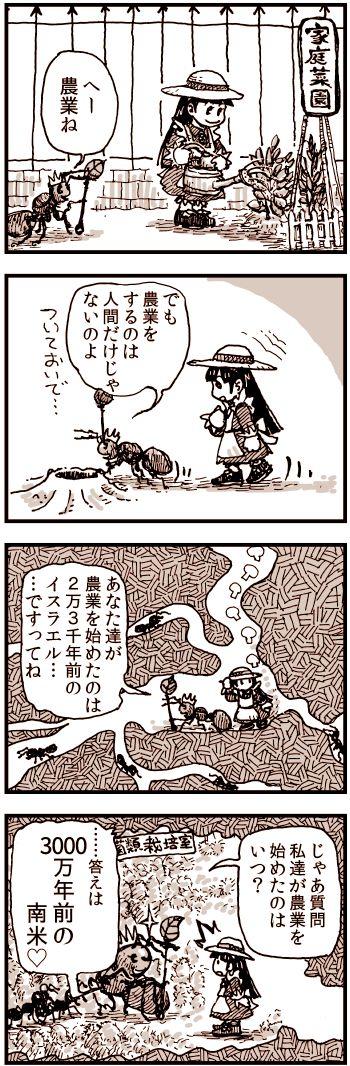 蟻の農業.jpg