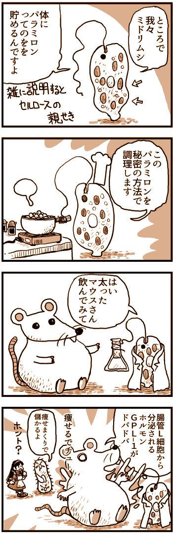 痩せるミドリムシ.jpg